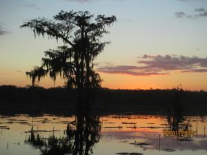 Louisiana Dec 2012 point and shoot071